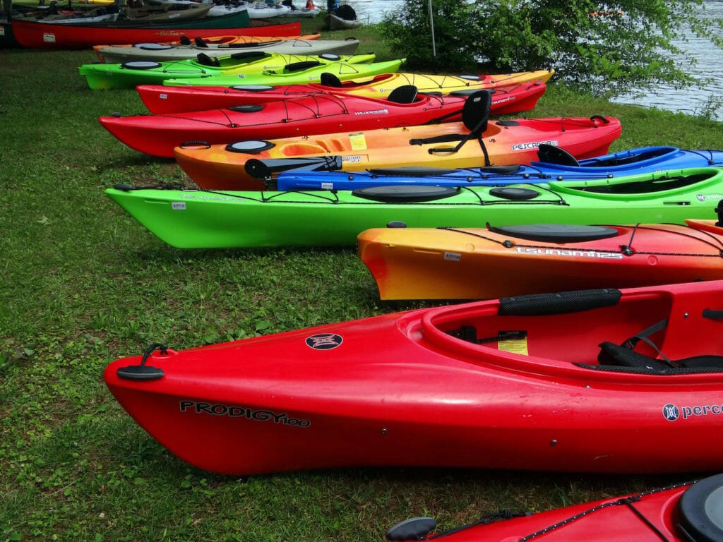 Different types of kayaks lined up